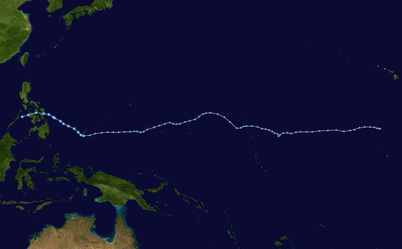 el camino de la tormenta Usagi