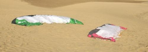 hai con diều trên cát