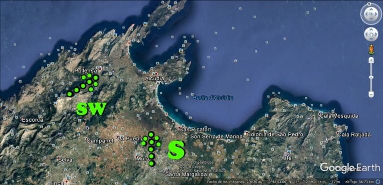 2 viento sur en Pollensa y Alcudia